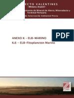 K.6 ELB-Fitoplancton Marino