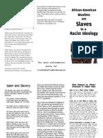 islam in a nutshell black muslims brochure