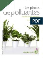 19499097 Les Plantes Depolluantes Purifier l Air de La Maison