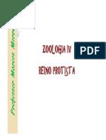 Zoologia IV - Estudando o Reino Protista Modo de Compatibilidade