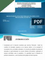 Presentacion Para Plantas y Planificacion
