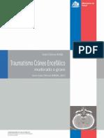 GUIA MINSAL TCE GRAVE.pdf
