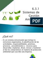6.3.1 Sistemas de Gestion Ambiental