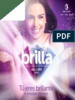 PROGRAMA+DE+RECONOCIMIENTO+2013+BOLIVIA+(mail+GP+14.12.2012)