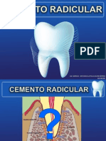cementoradicular-110418131852-phpapp01