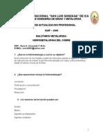 Balotario_hidrometalurgia Del Cobre