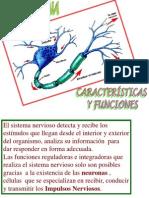 Neurona Monaa