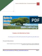 Libro+-+Libres+de+las+Drogas.pdf
