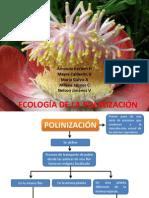 Dip. Ecologia de La Polinizacion