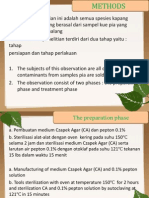 Kapang_kontaminan.pptx