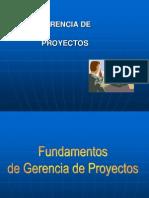 Gerencia de Proyectos - PMI