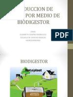 Produccion de Biogas Por Medio de Biodigestor