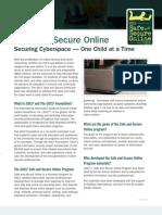 safe and secure online advocate information sheet