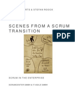 Scenes From a Scrum Transition