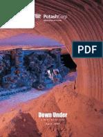 POT Mini Mine Tour Brochure