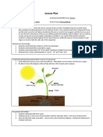 primary - group lesson plan