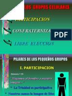 Pilares de Los Grupos Celulares