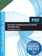 01-Principios de Direito Administrativo