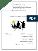 Estudios de Los Riesgos Industriales- TRABAJO COMPLET