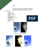 Informe trabajo1