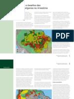 Atlas de Pressões e Ameaças às Terras Indígenas na Amazônia Brasileira