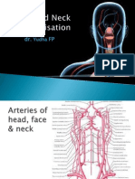 L9-Head and Neck Vascular