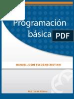 Programacion_basica.pdf