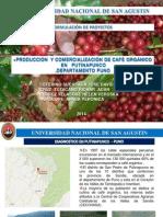 Cafe Organico Putinapunco 2014