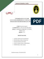 asistencia familiar y tutela.docx