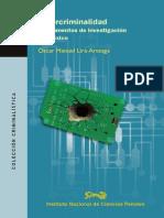 Cibercriminalidad, Fundamentos de Investigación en México
