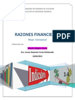 MapasconceptualesRazones Financieras