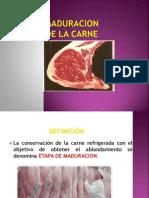 Maduracion de La Carne
