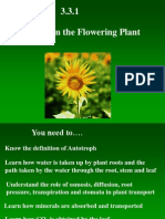 3 3 1 nutrition in the plant