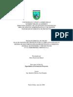 Trabajo de Grado Gestion de Proyectos Ferrominera