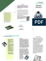 Publicacion-folleto