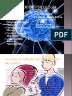 1º Período de Psicologia