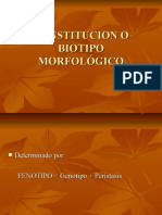 Constitucion o Biotipo Morfológico