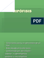 HIP_FISIS