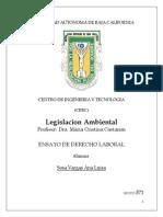 Ensayo legislacion ambiental