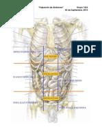 Material de apoyo- Palpación.docx