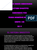 Colegio María Inmaculada Sistema Digestivo Publicar