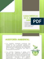 Características de La Auditoria Ambiental