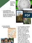 Proyecto Integral de Desarrollo