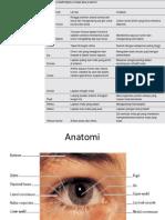 Anatomi Dan Fisiologi Mata