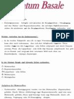 Stratum basale.pdf