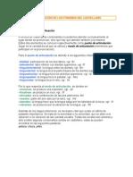 CLASIFICACIÓN DE LOS FONEMAS DEL CASTELLANO.pdf