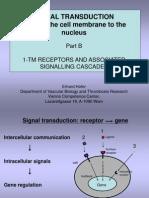 1 Signaling TM-receptors WS10