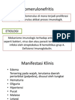 Glomerulonefritis - intan