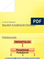Malaria Plasmodium Knowlesi