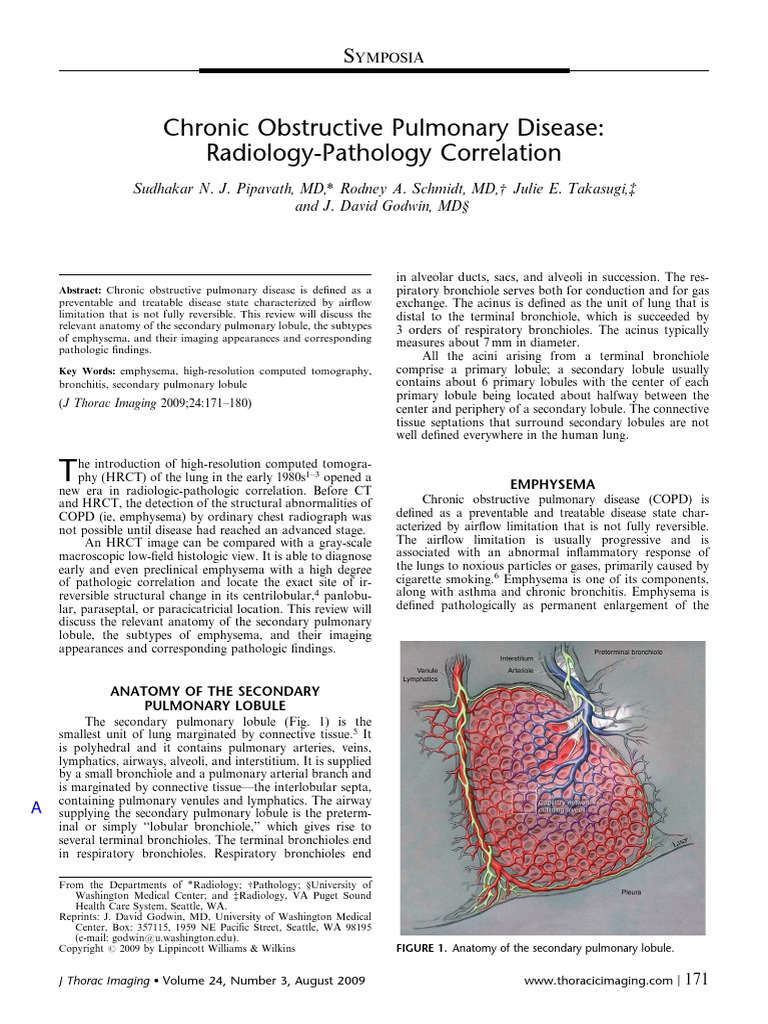 Chronic Obstructive Pulmonary Disease Radiology Pathology